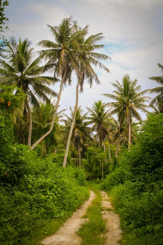 Cocos Island Guam
